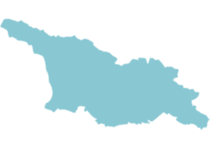 Development of Enforcement Legislation in Georgia